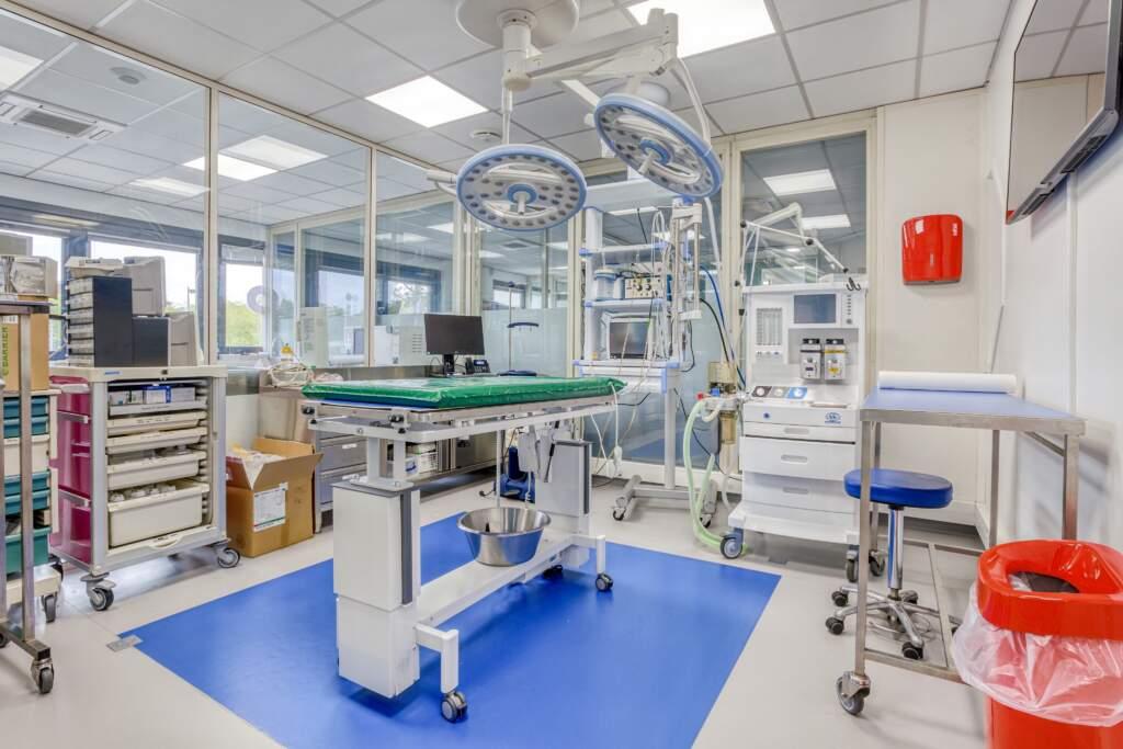 travaux amenagement clinique veterinaire 3 1024x683 - Création et aménagement d'une clinique vétérinaire à Guyancourt