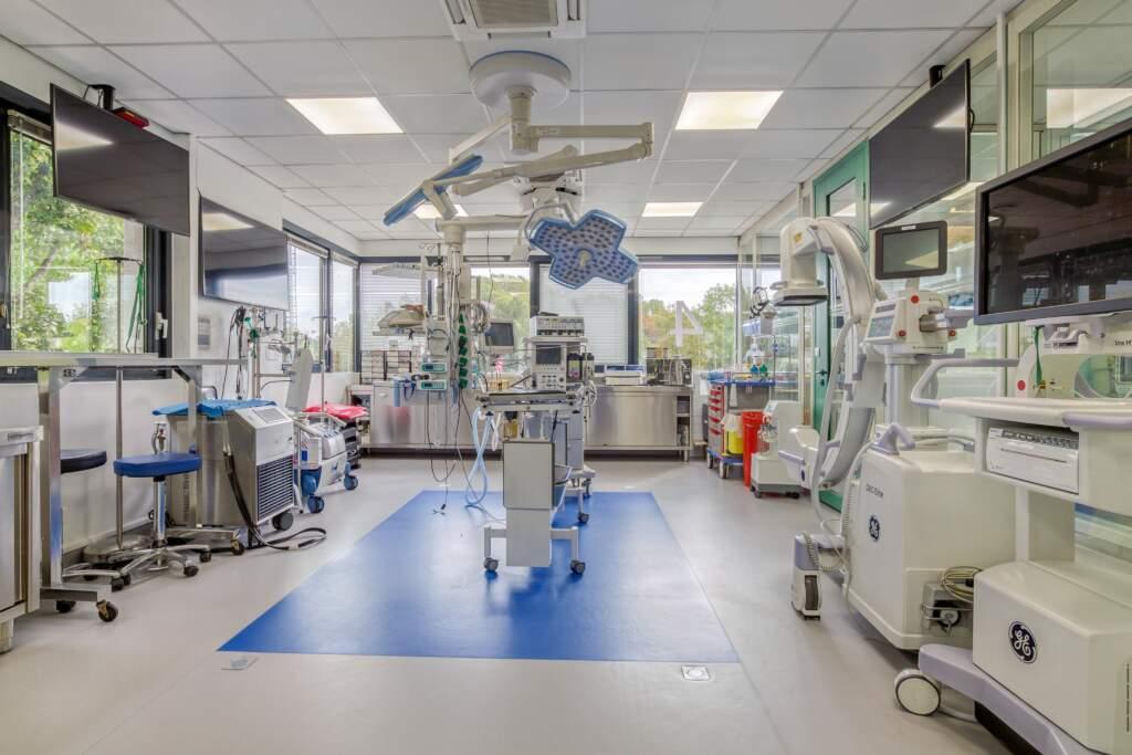 travaux amenagement clinique veterinaire 9 1024x683 - Création et aménagement d'une clinique vétérinaire à Guyancourt